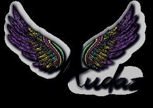 Tienda Audaz
